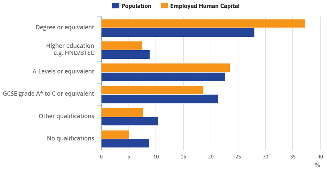 Employed human capital by highest qualification, 2015
